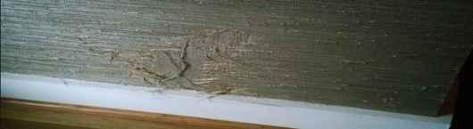 Wallpaper-Repair-Menifee-951-383-2903